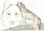 Loss Wolf