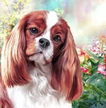 Cavalier King Charles Spaniel Painting