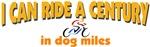 Century in dog miles