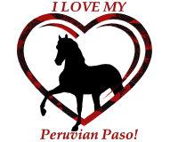 I LOVE My Peruvian Paso!