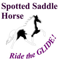 Spotted Saddle Horse, Ride the Glide