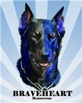 Braveheart dark #1