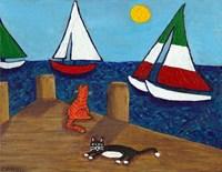 Cats and Sailboats