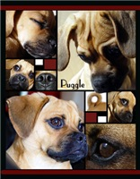 Puggle Parts