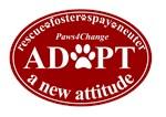 Adopt a New Attitude - Red