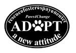 Adopt a New Attitude - Black