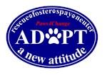 Adopt a New Attitude - Blue