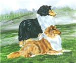 Rough Collie Pair w Tri