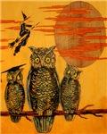 3 Owls