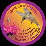 SOH: Bees & Hummingbirds