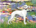 MONET'S LILIES<br>With Whippet #11B