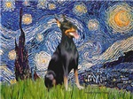 STARRY NIGHT<br>& Doberman PInscher
