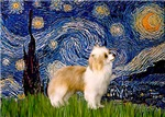 STARRY NIGHT<br>& Puff Chinese Crested