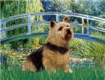 LILY POND BRIDGE<br>Norwich Terrier