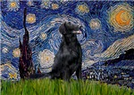 STARRY NIGHT<br>& Flat Coated Retriever