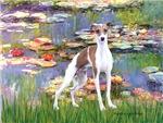 LILIES (#2)<br>Italian Greyhound