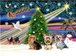 CHRISTMAS MAGIC<br>With Three Yorkies