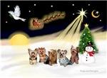 NIGHT FLIGHT<br>& 5 Yorkshire Terriers