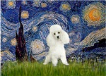 STARRY NIGHT<br>& White Poodle (Toy/Min)
