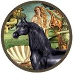Black Arabian Horse<br>In Birth Of Venus