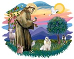 St. Francis #2 &<br>Greater Swiss Mountain Dog