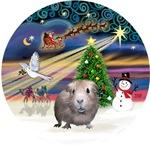 Christmas Magic<br>& Guinea Pig #2
