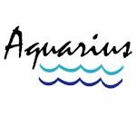 Aquarius T-shirts and Zodiac Gifts
