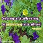 Noncomformity Cool