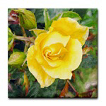 Lavish Yellow Rose