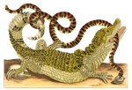 Caiman and False Coral Snake
