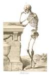 Skeleton Leaning on Tomb