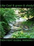 Environmental/Wildlife Conservation