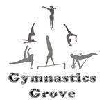 Gymnastics Grove