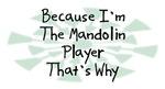 Because I'm The Mandolin Player