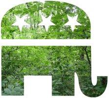 Green GOP