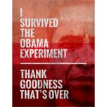 The Obama Experiment