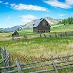 Wilde NW ~Barns