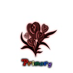 Primary Flower