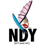 NDY Windsurfer