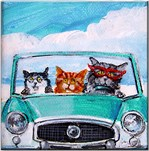 3 Cats In A Nash Metro