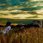 Wheat field Sundown