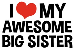 I Love My Awesome Big Sister t-shirt