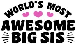Awesome Big Sister t-shirt