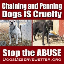 Chaining IS Cruelty