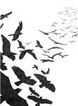 Flock of Birds in Flight for iPhone & iPad