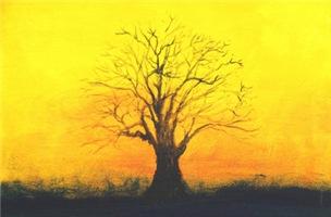 72.naked tree ?