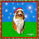 Christmas Collie