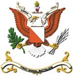 Army - Regimental Colors - 1st Signal Battalion