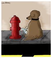Fire Hydrant Revenge