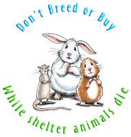Don't Breed (circle)